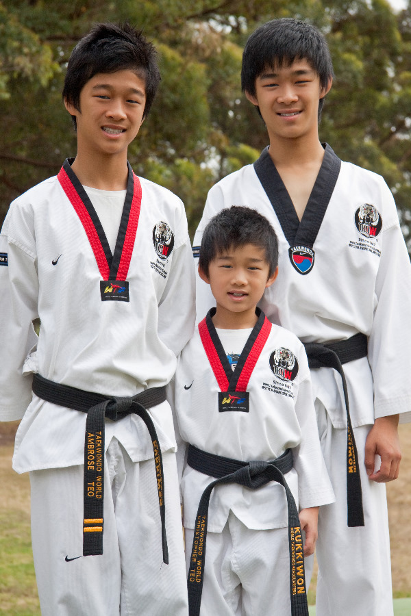 TKDWTeo_family_port
